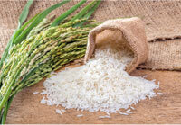 Agro & Food Processing